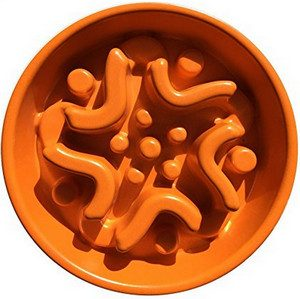 4. The Maze in Bowl Slow Feeder