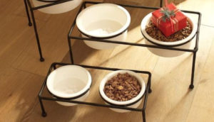 Elevated Dog Feeders With Ceramic Bowls