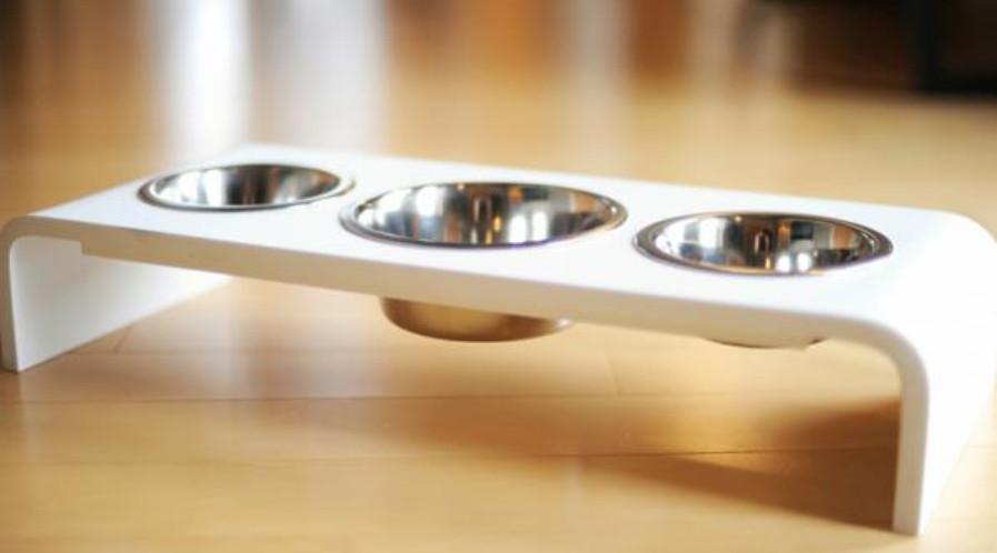 Triple Bowl Dog Feeder