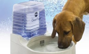 dog water bowl with reservoir
