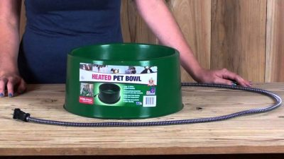 heated dog water bowls
