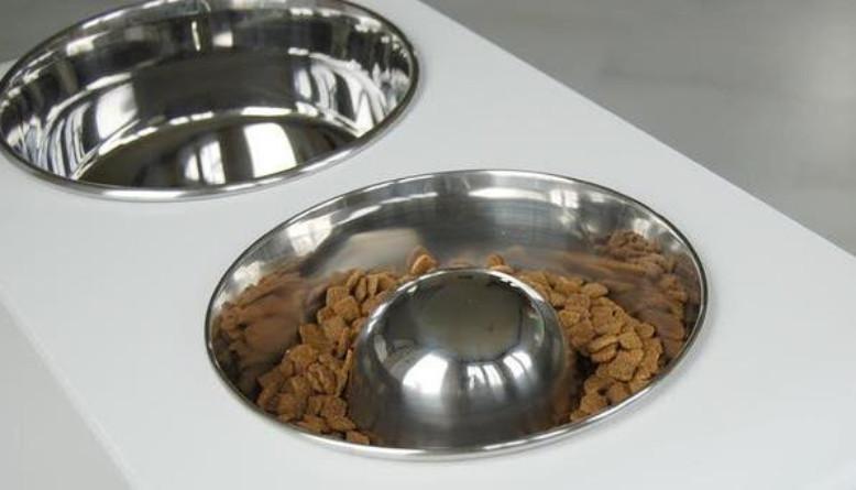 metal slow feeder dog bowl