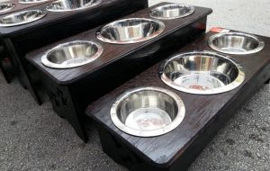 three bowl dog feeder