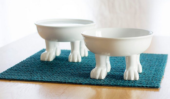 Elevated Ceramic Dog Bowls