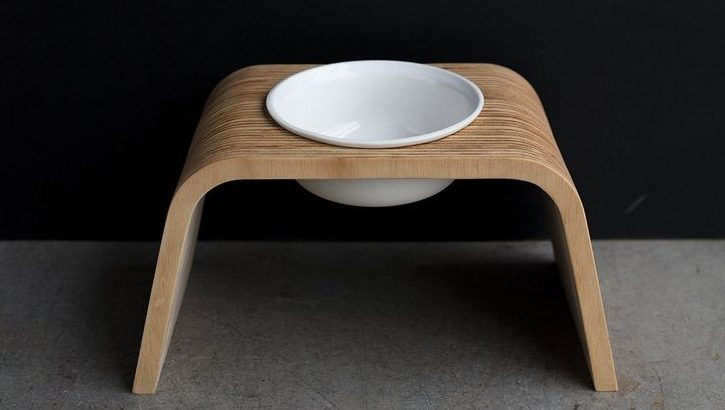 Most Jaw-Dropping Modern Elevated Dog Bowls