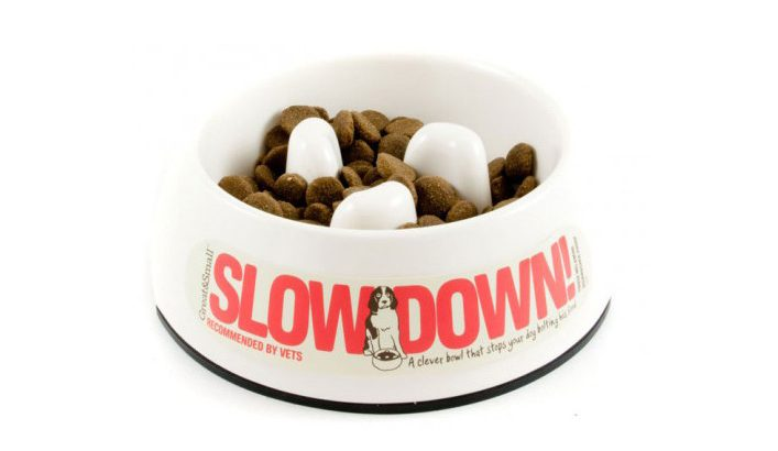 Simply Pets Online A-Maze-in-a-Bowl Slow Feed