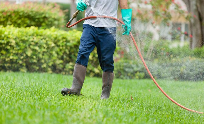 Natural-based flea and tick spray for yard