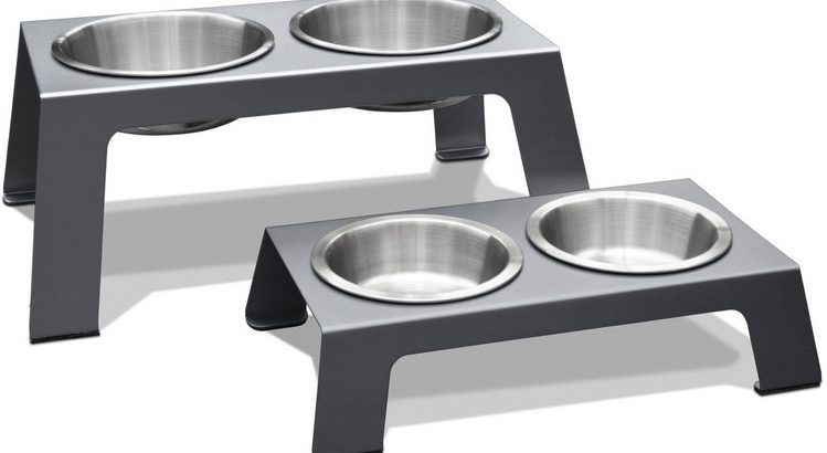 elevated stainless steel dog bowl