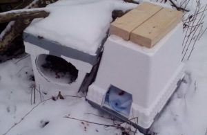 Feral Cat Shelter Styrofoam Cooler, a Weapon for Cat Hero