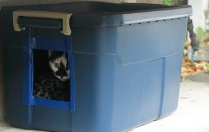 Simple Steps to Make Feral Cat House Rubbermaid