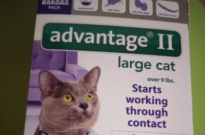 Choosing the Right Advantage for Cats Over 9 lbs