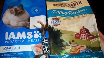 Increase Your Saving Through Coupon for Iams Cat Food