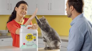 Tidy Cats Litter Lightweight Variations and what is So Good about It