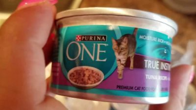 Purina One Cat Food Coupon and How to Save Money on Your Cat Food