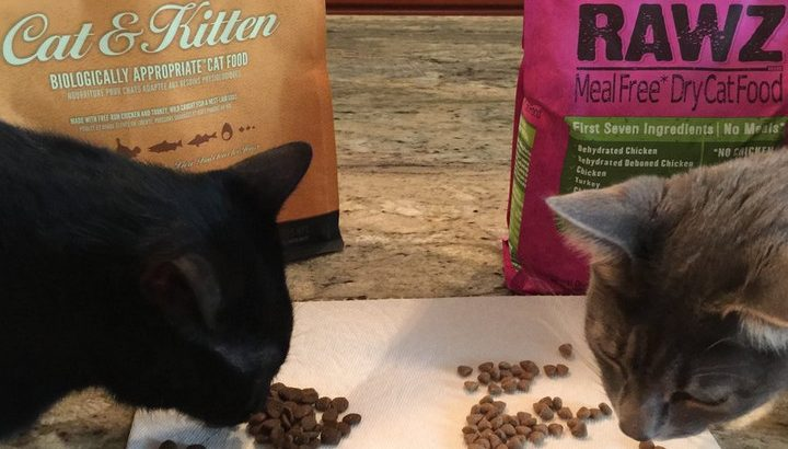 Rawz Cat Food Reviews and Reasons Why You Need to Make a