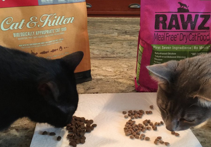 Rawz Cat Food Reviews and Reasons Why You Need to Make a Purchase