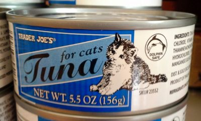 The Trader Joe's Cat Food Products and the Details as Your References