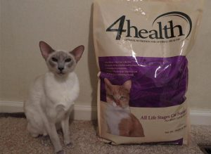 What to Look for 4health Cat Food Ingredients