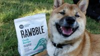 Rawbble Dog Food with Raw Ingredients for Healthy Nutrition