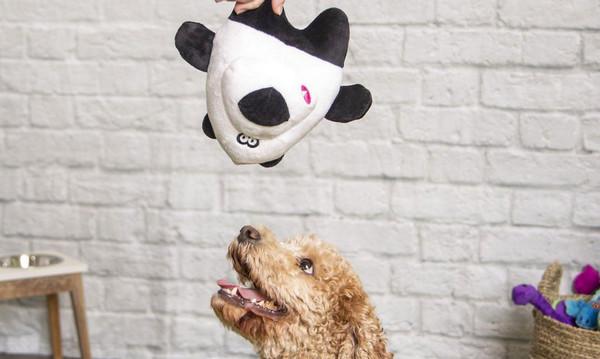 GoDog's Pearl the Panda